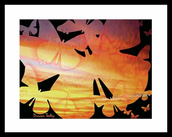 Sunset Butterflies Print