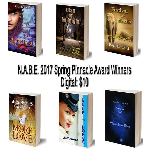 Digital: 2017 Pinnacle Award Winners
