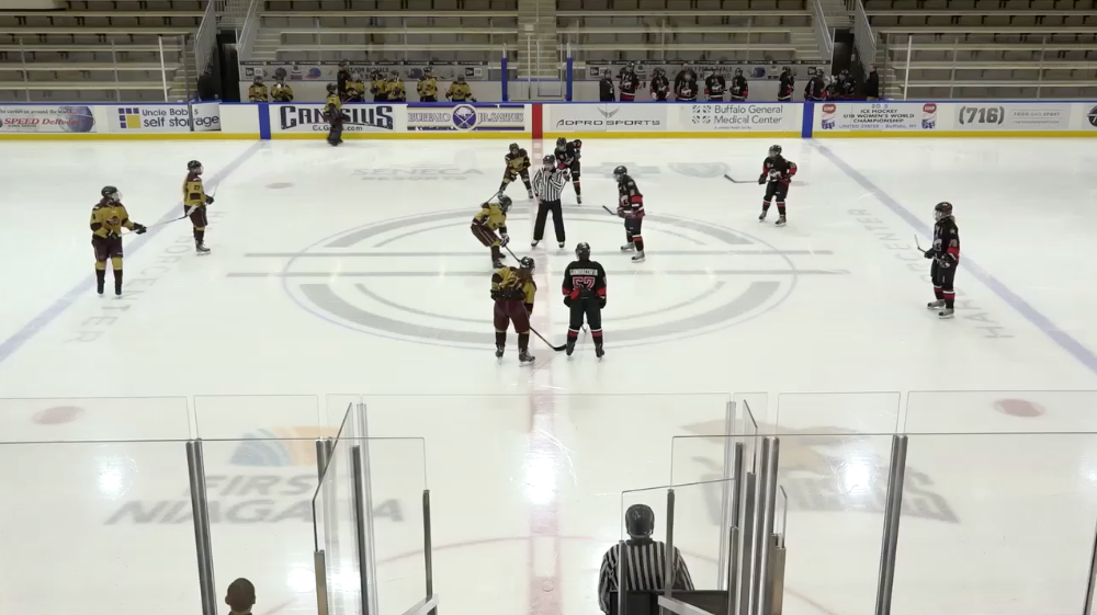16U/17U Girls Tier 2 Amherst Lady Knights vs Rochester Grizzlies - Consolation