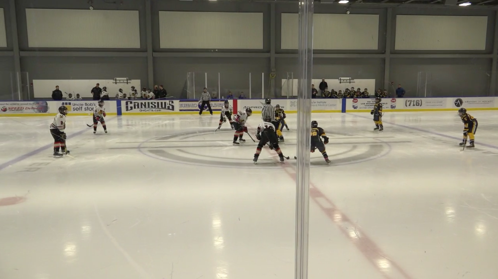 12U AA Skaneateles vs Michigan Ice Hawks