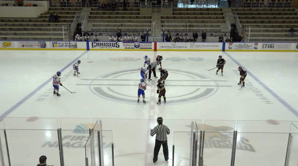 11U AAA Rochester Grizzlies vs Rochester Americans - Semifinal